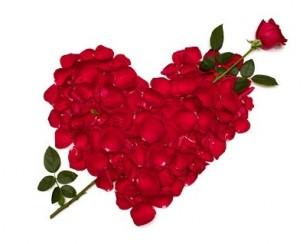 לב פרחים