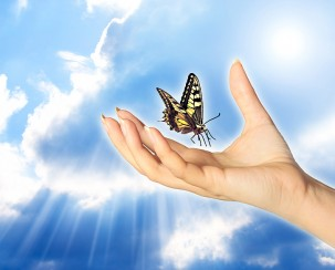 bigstock_a_woman_hand_and_butterfly_ove_16383029