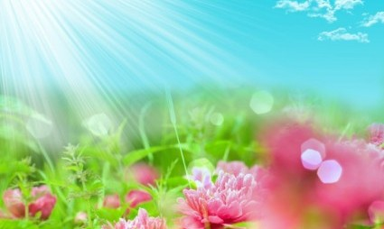 fantasy_flowers_highdefinition_picture_3_166841