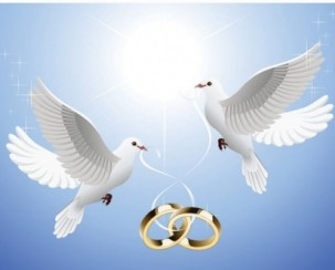 the_pigeons_on_the_ring_dangling_from_vector_163570
